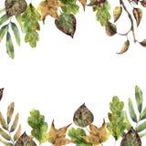Quadro do outono da aquarela com folhas da queda Folhas pintados à mão e ramo de árvore isolado no fundo branco seasonal ilustração royalty free