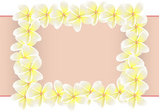 Quadro do Plumeria Fotografia de Stock Royalty Free