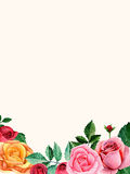 Quadro do ramalhete das rosas Arranjo de flores do Watercolour Fotos de Stock Royalty Free