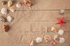 Quadro do seashellson no fundo da areia Espaço para o texto Fotos de Stock