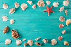 Quadro do seashellson no fundo de madeira Espaço para o texto Imagens de Stock