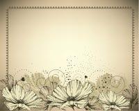 Quadro do vintage com flores brancas ilustração royalty free