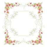 Quadro do vintage com rosas Foto de Stock