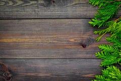 Quadro do zimbro para o cartaz ou o projeto O zimbro ramifica no espaço de madeira escuro da cópia da opinião superior do fundo fotografia de stock royalty free