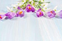 Quadro dos açafrões e dos snowdrops na tabela Imagem de Stock Royalty Free