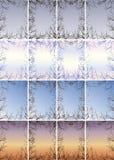 Quadro dos ramos contra o céu Fotografia de Stock Royalty Free