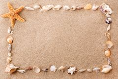Quadro dos seashells Fotos de Stock Royalty Free