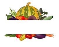 Quadro dos vegetais diferentes Foto de Stock Royalty Free