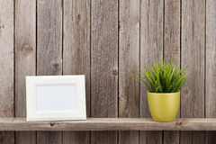 Quadro e planta vazios da foto Foto de Stock