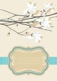 Quadro e ramo de florescência Fotografia de Stock Royalty Free