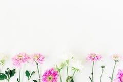 Quadro feito das flores cor-de-rosa e brancas isoladas no fundo branco Composição floral Configuração lisa, vista superior Imagem de Stock