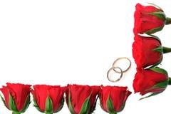 Quadro feito das rosas e dos anéis fotografia de stock