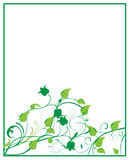 Quadro floral Fotos de Stock Royalty Free