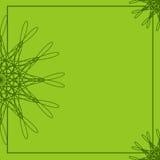 Quadro floral abstrato verde Molde geométrico da beira Fundo para convites, cartões, cartão, folhetos, menus Fotografia de Stock Royalty Free