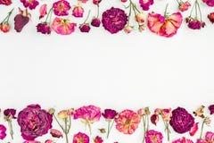 Quadro floral com as rosas cor-de-rosa secadas no fundo branco, configuração do plano, vista superior Imagens de Stock