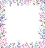 Quadro floral com flores e folhas ilustração royalty free