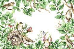 Quadro floral com os pássaros em ramos Fotografia de Stock Royalty Free