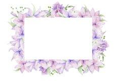 Quadro floral com rosas cor-de-rosa e as folhas decorativas Projeto do convite da aquarela horizontal Fundo para salvar a data cu foto de stock royalty free