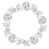 Quadro floral da beira e do círculo Imagens de Stock Royalty Free