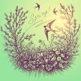 Quadro floral da mola com andorinhas ilustração stock