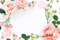 Quadro floral de rosas, de botões e de folhas da peônia no fundo branco Configuração lisa, vista superior Fundo floral Imagens de Stock