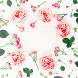 Quadro floral de rosas, dos botões e do cartão cor-de-rosa no fundo branco Configuração lisa, vista superior Fundo floral Fotografia de Stock