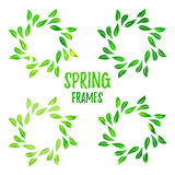Quadro floral do contorno verde elegante do watercolour Foto de Stock Royalty Free