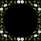 Quadro floral do vintage Foto de Stock