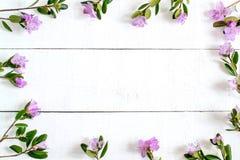 Quadro floral festivo no fundo de madeira branco Foto de Stock Royalty Free