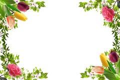 Quadro floral, humor da mola imagem de stock