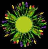 Quadro floral Imagem de Stock Royalty Free