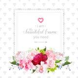 Quadro floral quadrado do projeto do vetor Fotos de Stock Royalty Free