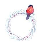 Quadro floral redondo da aquarela com um pássaro Foto de Stock Royalty Free