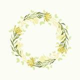 Quadro floral redondo da aquarela do vetor Beira erval da tração da mão Foto de Stock