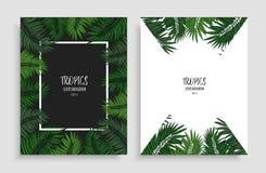 Quadro floral verde com folhas tropicais Dois moldes do projeto para a folha de prova seu texto, chamada-à-ação, cópia, design we ilustração royalty free
