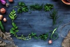 Quadro fresco das ervas no fundo escuro: salsa, aneto, aipo, tomilho, manjerona, lugar para o texto Imagem de Stock