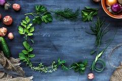 Quadro fresco das ervas no fundo escuro: salsa, aneto, aipo, tomilho, manjerona, lugar para o texto Imagens de Stock