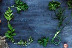 Quadro fresco das ervas no fundo escuro, vista superior Fotografia de Stock Royalty Free
