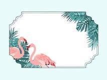 Quadro horizontal tropical da beira do flamingo exótico Fotos de Stock Royalty Free