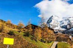 Quadro indicador amarelo na montanha Imagens de Stock