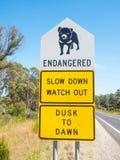 Quadro indicador do diabo tasmaniano fotografia de stock