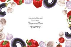 Quadro largo do vegetariano da aquarela por vegetais do frescor ilustração stock