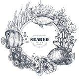 Quadro monocromático com corais tirados mão do recife e os peixes exóticos Imagens de Stock