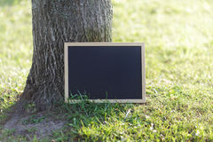 Quadro-negro vazio na grama perto da árvore fotos de stock royalty free