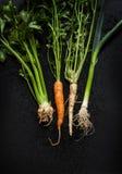 Quadro novo dos vegetais da mola - cenoura, alho-porro, aipo vermelho, salsa no preto Foto de Stock Royalty Free