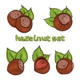 Quadro Nuts 1 Foto de Stock Royalty Free