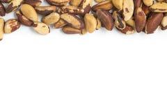 Quadro Nuts brasileiro Castanha faz Para Imagem de Stock Royalty Free