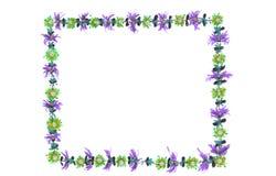 Quadro o com flores Fotos de Stock