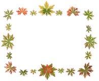 Quadro põr da folha do outono fotos de stock royalty free