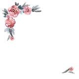 Quadro pintado à mão da flor da aquarela bonito ilustração stock